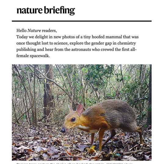 Nature briefing on a desktop device