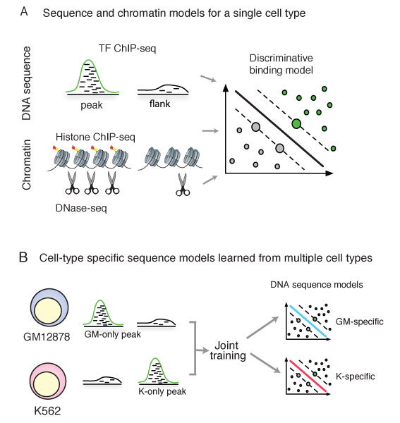 Machine learning approaches to genomics : Nature ENCODE