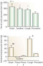 Figure 3 : Comparison of intercordal and intratracheal pressure during straining, swallowing, coughing, and phonation. Unfortunately we are unable to provide accessible alternative text for this. If you require assistance to access this image, or to obtain a text description, please contact npg@nature.com