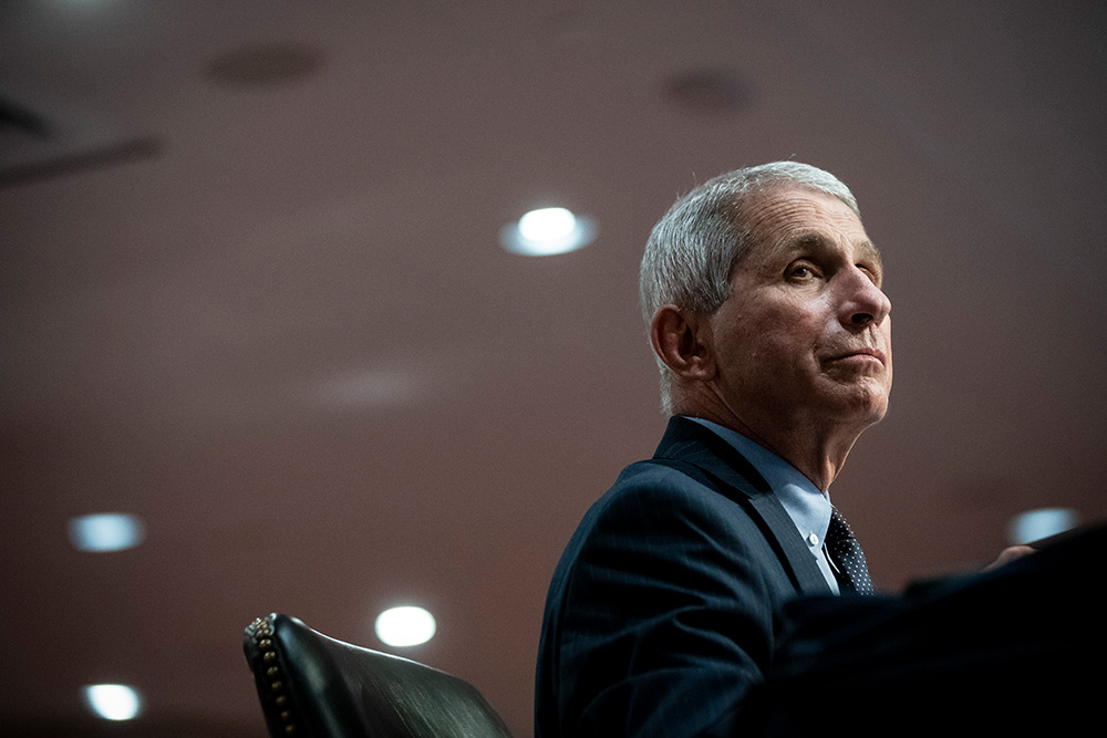Anthony Fauci listens during a Senate Committee                hearing.