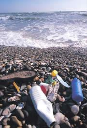 Plastic waste in the sea ends up as microscopic particles.