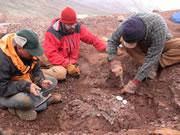 The crew picks over rocks and bones despite the dismal weather.