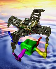The robot constantly models its own body to work out how best to limp along. Watch a video here