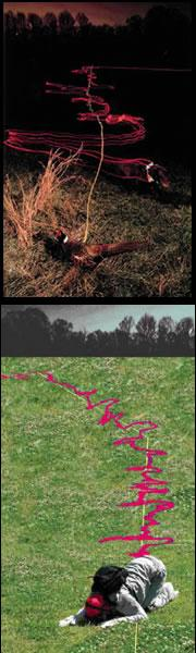A dog tracks a pheasant (top) in much the same way that a volunteer student tracks some chocolate (bottom).