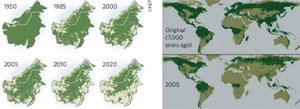 The extent of the problem: changes in forest cover in Borneo (left) and the human impact globally.