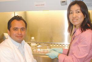 Julio Ramirez and Su Guo changed fields to work on human stem cells.