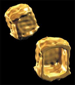 Electron microscope images of DNA boxes (Ebbe Sloth Andersen)