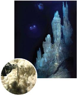 The carbonate structures at the Lost City hydrothermal field in the Atlantic Ocean have a delicate structure when first formed (inset).