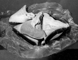This sandwich spent months at the bottom of the ocean.