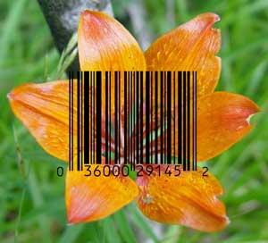 Biologists unveil plant DNA barcode