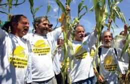 Protesters can brandish science suggesting that genetically modified crops are harmful.
