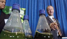 Scaling up production from the flask to commercial quantities of biofuels from algae is the real challenge.