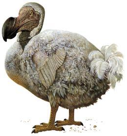So a update happend? News.2010.120.dodo