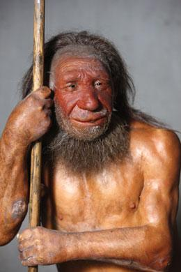 Neanderthals once bred with Homo sapiens.
