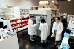 Garage-band biotech: ArmaGen's commercial space in Santa Monica is close quarters.