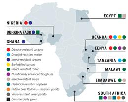 Map of some GM trials in Africa