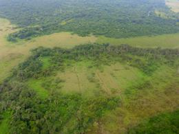Mayans converted wetlands to farmland