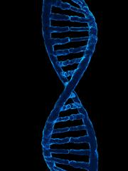 human genome project information