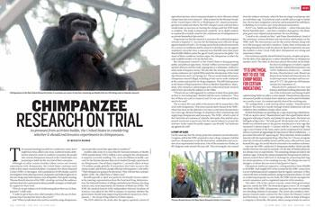 Should animals be used for research articles