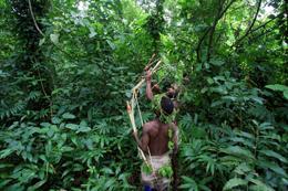 Ugandan pygmies