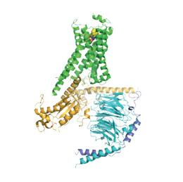 A new molecular portrait shows how the activation of a hormone receptor (green) by a small signalling molecule (top) causes a dramatic structural shift in its associated G protein (yellow, blue and mauve)