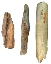 Most of the Neanderthal genome was sequenced from bones found in Vindija cave, Croatia.