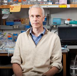 "Brian Kobilka is ""inherently fascinated"" with G-protein-coupled receptors and has single-mindedly sought their structures."