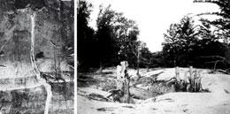 Pictures taken a century after the 1811–12 quakes show their lasting effects. The shaking liquefied buried sand layers, causing them to erupt through fissures (left) and cover the ground in thick deposits that smothered trees (right).