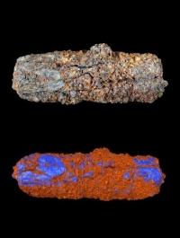 The Gerzeh bead (top) has nickel-rich areas, coloured blue on a virtual model (bottom), that indicate a meteoritic origin. OPEN UNIV./UNIV. MANCHESTER