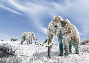09a70c97599 Can a mammoth carcass really preserve flowing blood and possibly live cells