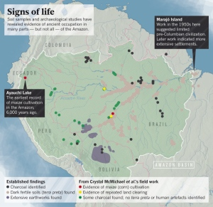 Amazon ecology footprints in the forest nature news comment source crystal mcmichael gumiabroncs Gallery
