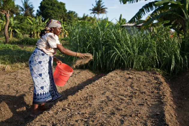 Farmers dig into soil quality nature news comment for Soil 7t7 woman