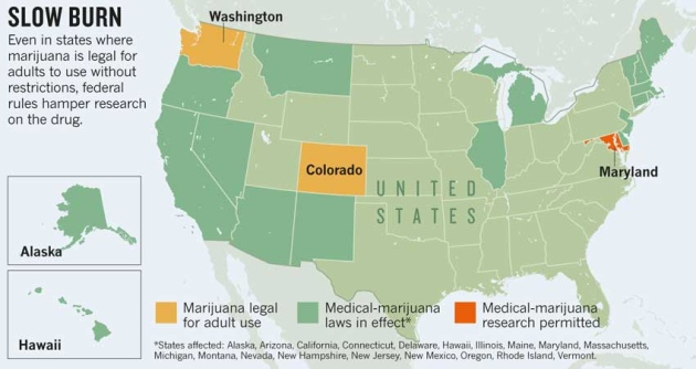 Federal Red Tape Ties Up Marijuana Research Nature News Comment - Marijuana map ot the us