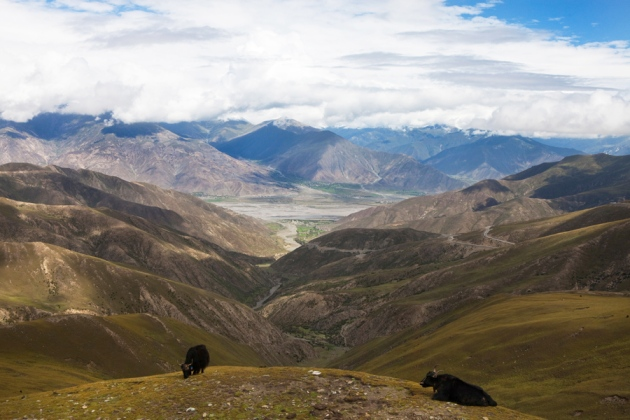 the region of the tibet himalayas essay Finally to the bookends of the himalayas – pakistan and tibet – at the western and eastern ends, respectively  yet both regions are home to some spectacular high-altitude trekking routes .