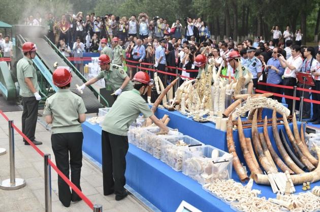 @ Nature/Li Xin/Xinhua/Alamy