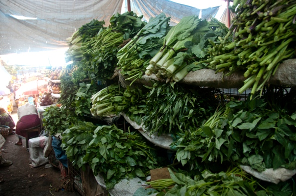 the rise of africa s super vegetables nature news amp comment