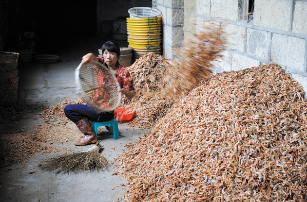 Sustainability: Don't waste seafood waste : Nature News