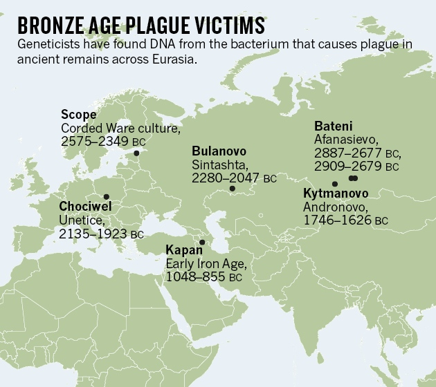 Bronze age skeletons were earliest plague victims nature news related stories gumiabroncs Gallery