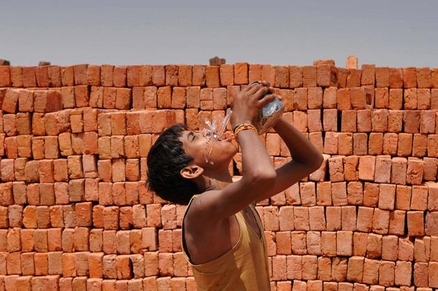 @ Nature/Burhaan Kinu/Hindustan Times/Getty