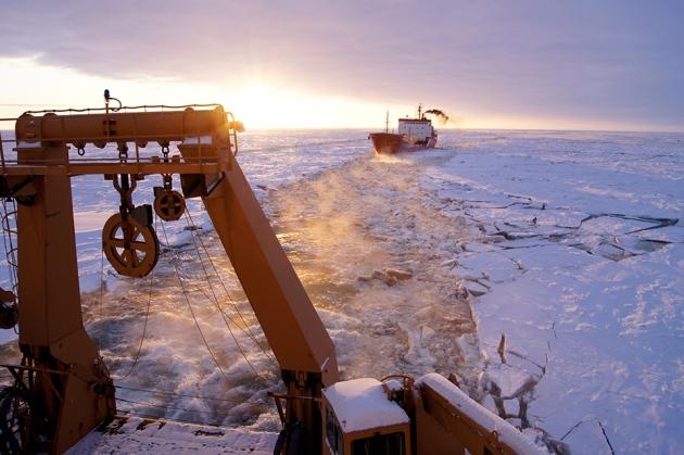 Een Warme Winter : Speedier arctic data as warm winter shrinks sea ice nature news