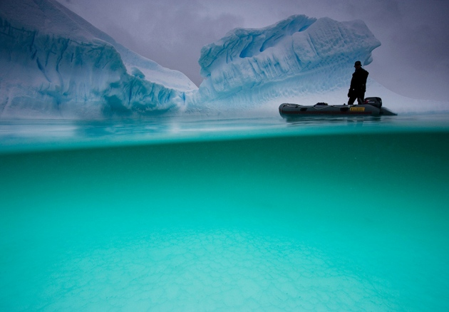 @ Nature/Paul Nicklen/National Geographic Creative