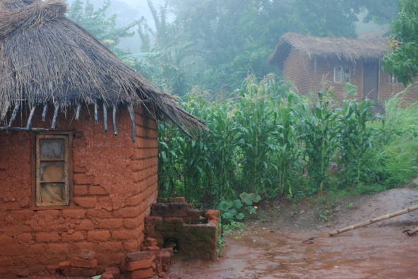 African agriculture: Dirt poor : Nature News & Comment Poor African Villages