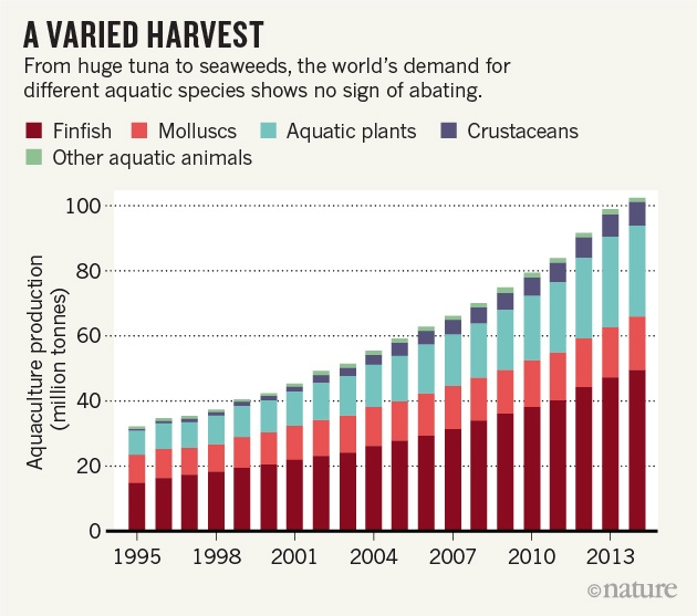 Farmed fish drive sea change in global consumption nature news manuel barange director of the fisheries and aquaculture policy and resources division at the fao notes that 50 of aquaculture now uses species that do sciox Gallery