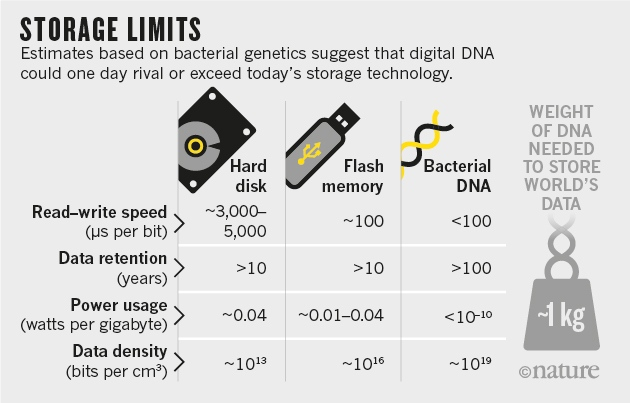 How DNA could store all the world's data |