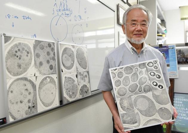 @ Nature/Akiko Matsushita/Kyodo News via AP