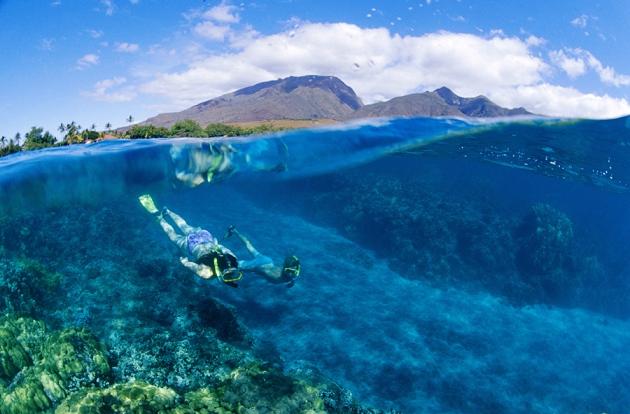 Divng Big Island Hawaii