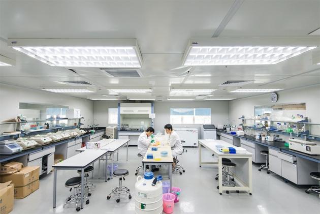 China's genomics giant to make stock-market debut