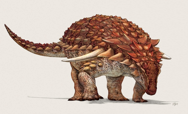 Nodosaur_06A_201708011335_72dpi-1500px.jpg