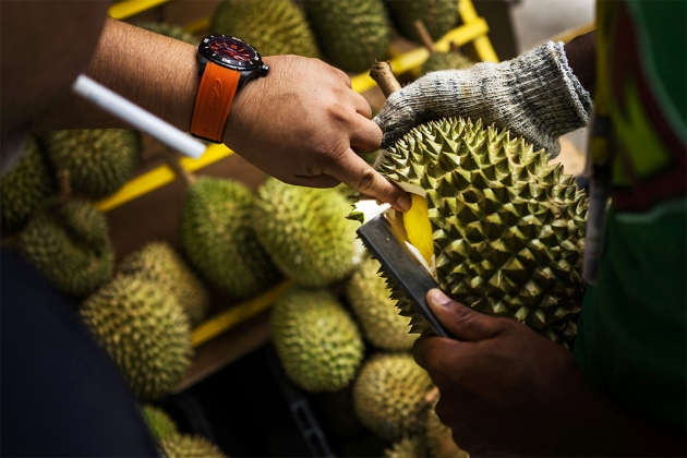 Experts Reveal the Secret behind Durian Fruit's Unbearable Pungent Smell