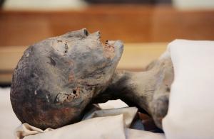 Egyptian mummies yield genetic secrets 1.12793